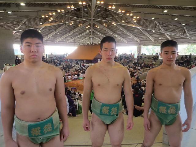 sumo-20160328s